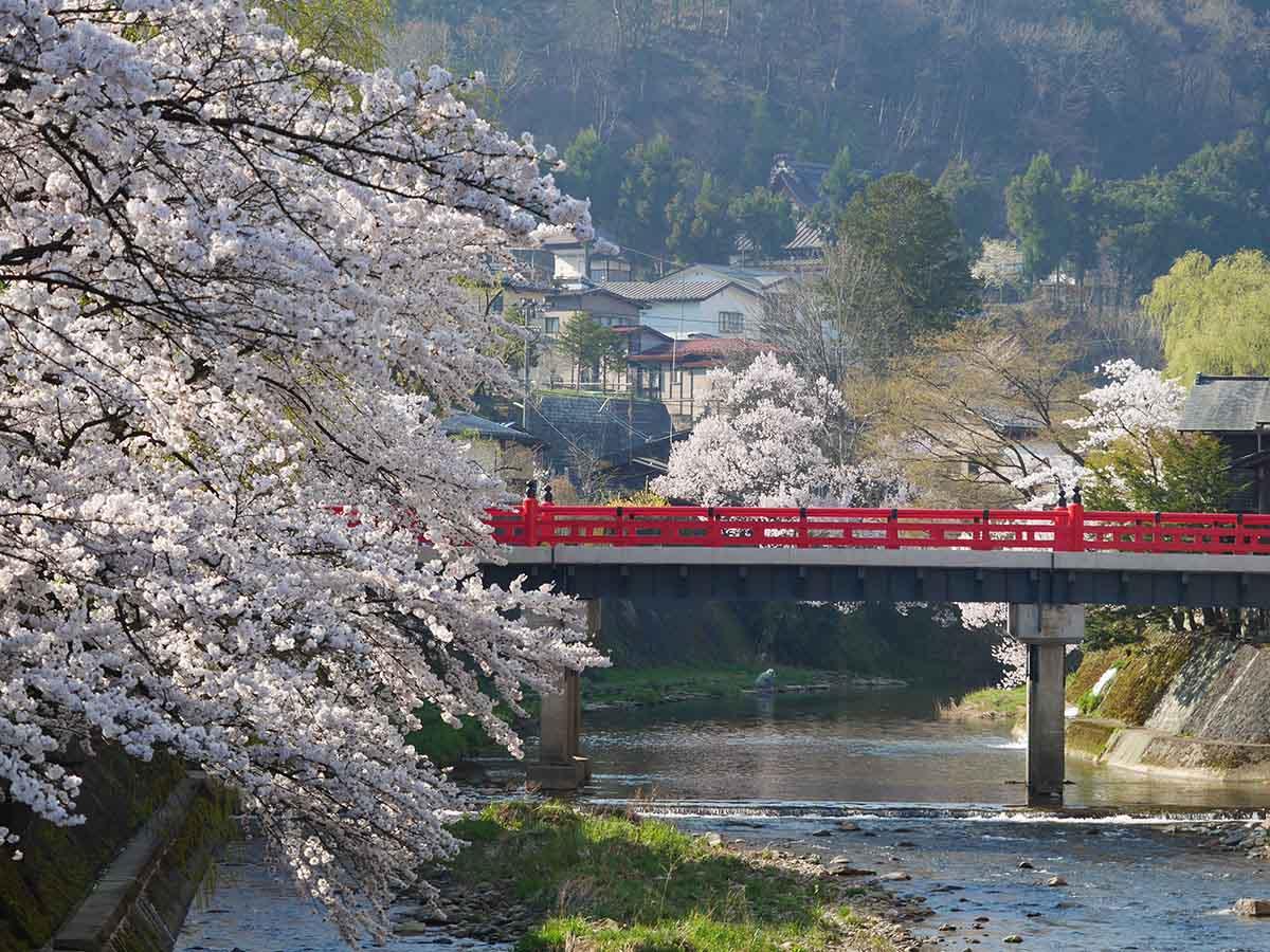 飛騨高山中橋周辺:高山市